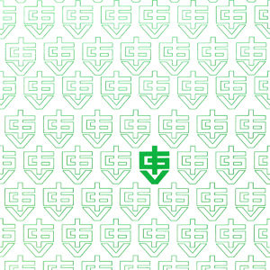 Le premier logo IGV